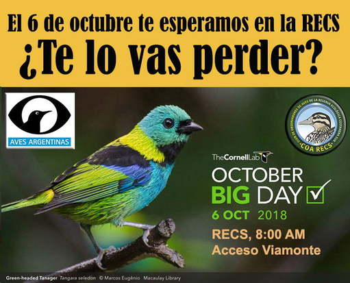 Salida 6 octubre Big Day