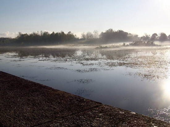 Neblina/Mist