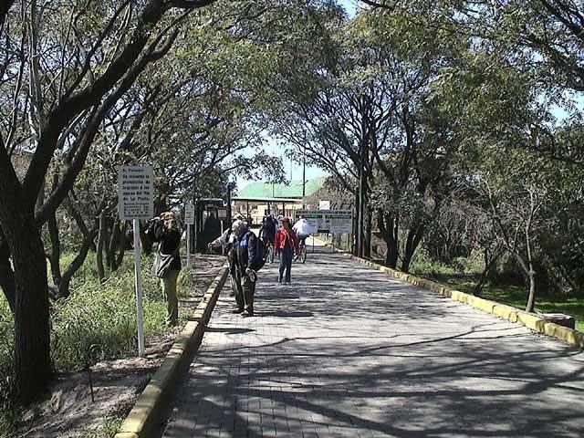 Entrada Brasil/Brasil Access