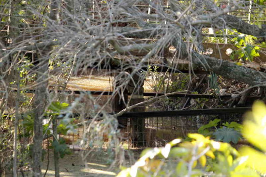 Agua en las lagunas/Water in the ponds