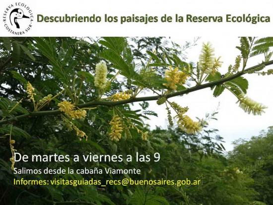 Semana_RECS