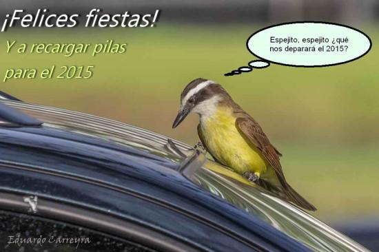 felices2014