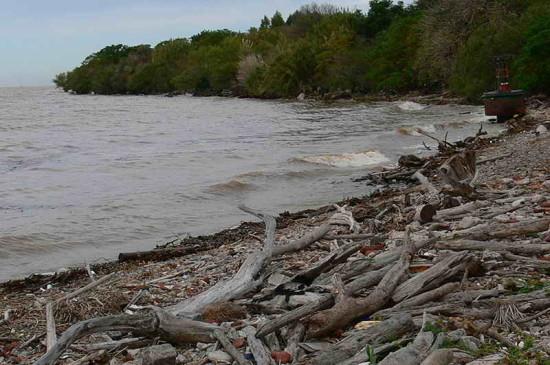 río crecido1 SAC 5 15