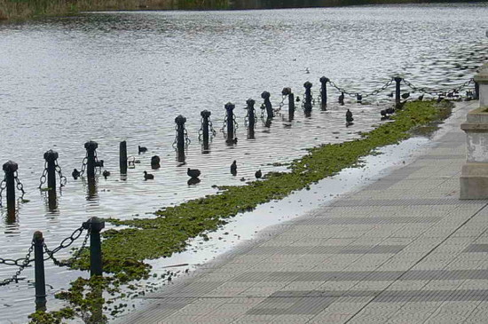 Lluvia/Rainfall
