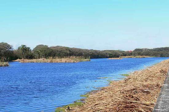 Vista de Coipos/View of Coypu Pond