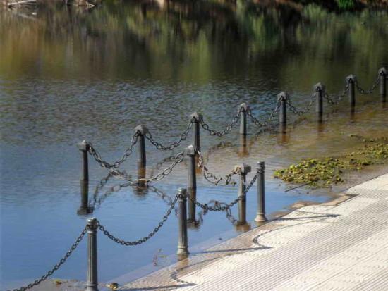 Vista Coipos/View Coypu Pond