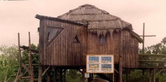 primeras cabañas en años 80