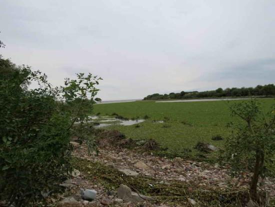 Vista Canal Sudeste/View Canal Sudeste