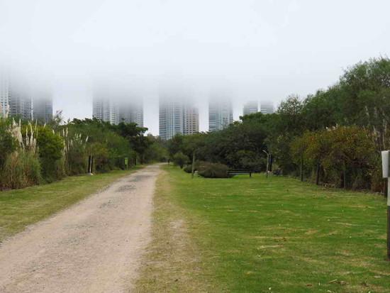 Vista de los edificios/View of the buildings