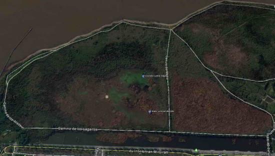 Ubicación Cisnes/Swans' location