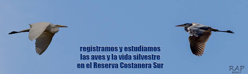 Reserva Ecológica Costanera Sur