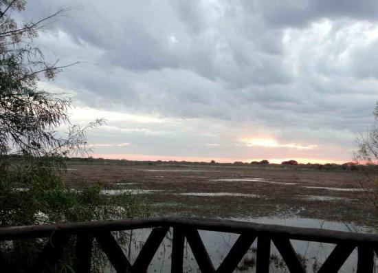 Vista de Patos/View of Duck Pond