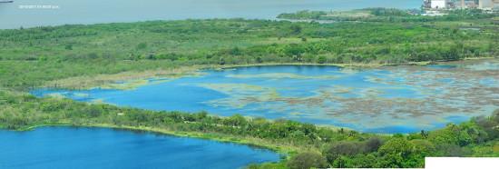Laguna de los Patos/Duck Pond