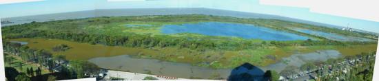 Gaviotas Coipos/Gull and Coypu Ponds
