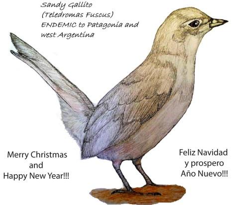 Sandy Gallito MTG Navidad