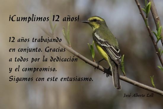 felices 12