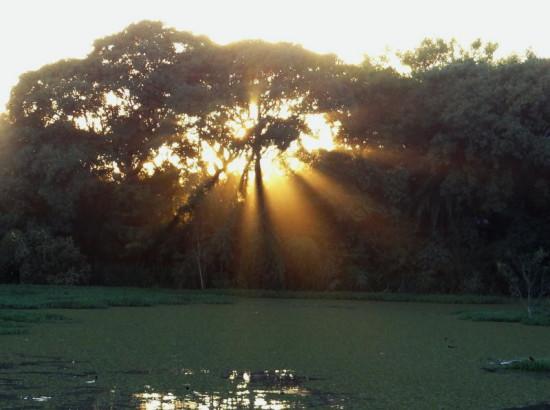 Sol subiendo/Sun rising